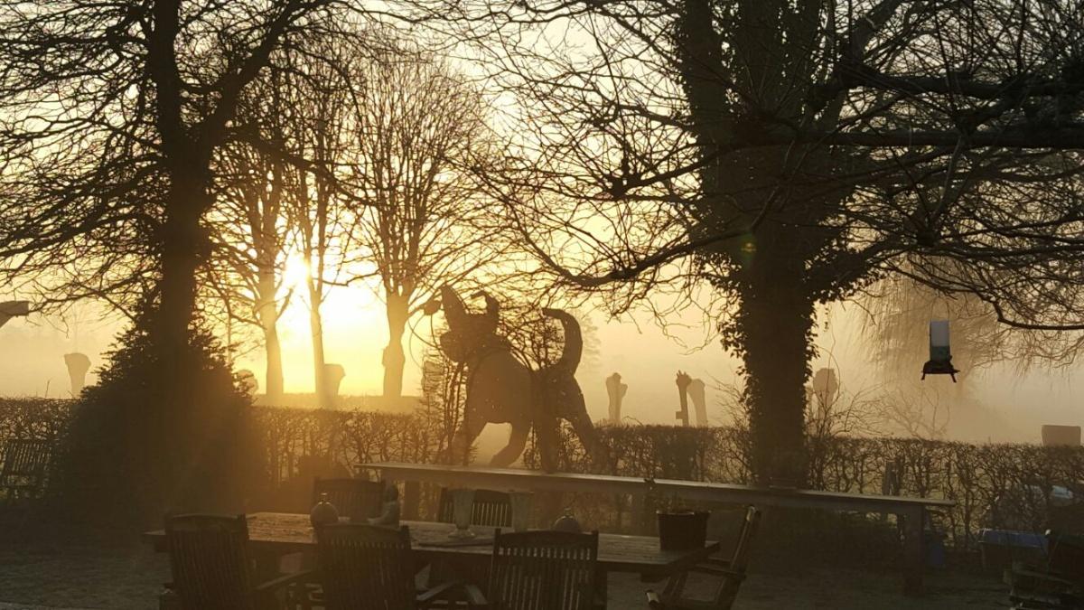 Ochtendzon-Natuurcamping-Groningen_Fleremaheerd